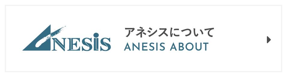 アネシスについて